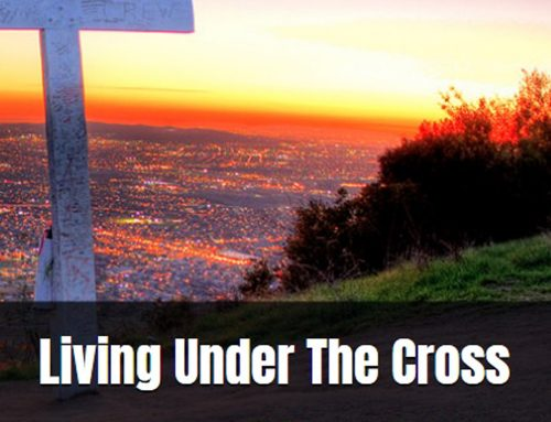 """Introduction To Bear's New Book """"Living Under The Cross"""""""